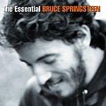 Bruce Springsteen The Essential Bruce Springsteen (3 Discs)