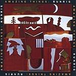 Runrig Amazing Things