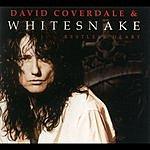 Whitesnake Restless Heart