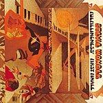 Stevie Wonder Fulfillingness' First Finale