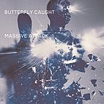 Massive Attack Butterfly Caught