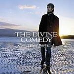 The Divine Comedy Come Home Billy Bird