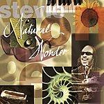 Stevie Wonder Natural Wonder: Live