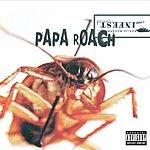 Papa Roach Infest (Papa Roach)