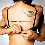 Aerosmith Young Lust: The Aerosmith Anthology