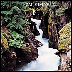 Cat Stevens Back To Earth