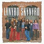 Lynyrd Skynyrd The Essential