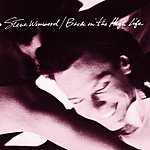 Steve Winwood Back In The High Life