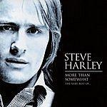 Steve Harley More Than Somewhat: The Very Best Of Steve Harley