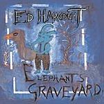 Ed Harcourt Elephant's Graveyard