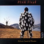 Pink Floyd The Delicate Sound Of Thunder