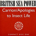 British Sea Power Carrion/Apologies To Insect Life