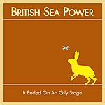 British Sea Power It Ended On An Oily Stage