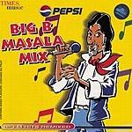 Sudesh Bhosle Big B Masala Mix
