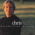 Chris Eaton Wonderful World