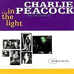 Charlie Peacock In The Light: The Very Best Of Charlie Peacock