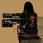 Cathy Davey Clean & Neat
