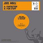 Joel Mull Fantastish