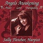 Sally Fletcher Angels Awakening