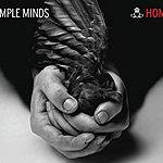 Simple Minds Home