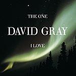 David Gray The One I Love