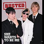 Busted She Wants To Be Me (Single)