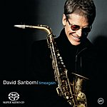 David Sanborn Time Again