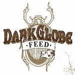 Dark Globe Feed (Single)