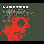 Ladytron Destroy Everything You Touch/Seventeen '05