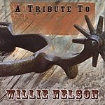 Pamela McNeill A Tribute To Willie Nelson