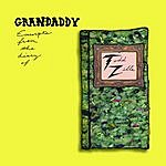 Grandaddy Excerpts From The Diary Of Todd Zilla (EP)