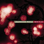 Abandoned Pools Red Flag (Yahoo Exclusive)