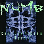 Numb Christmeister/Bliss