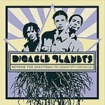 Digable Planets Beyond The Spectrum: The Creamy Spy Chronicles (Parental Advisory)