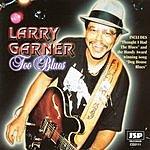 Larry Garner Too Blues