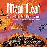 Meat Loaf Dead Ringer For Love (Live)