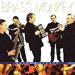 Brass Monkey Sound & Rumour
