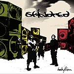 Skindred Nobody (Single)