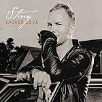 Sting Sacred Love (UK/European Tour Edition)