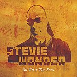 Stevie Wonder So What The Fuss
