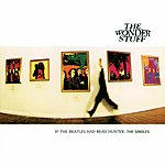 The Wonder Stuff If The Beatles Had Read Hunter... The Singles
