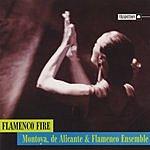 Montoya, de Alicante & Flamenco Ensemble Flamenco Fire