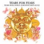 Tears For Fears Tears Roll Down: Greatest Hits 82-92