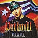 Pitbull M.I.A.M.I. (Edited)