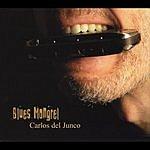 Carlos Del Junco Blues Mongrel