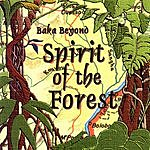 Baka Beyond Spirit Of The Forest