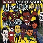 Mad Professor Under The Spell Of Dub