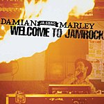 Damian Marley Welcome To Jamrock (Live At Summer Fest)