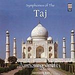 Abhishek Ray Amazing India: Symphonies Of The Taj