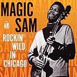 Magic Sam Rockin' Wild In Chicago